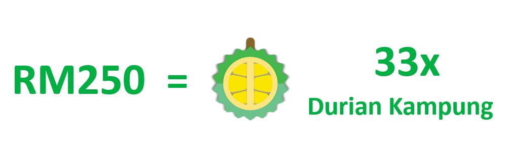 33x durian kampung